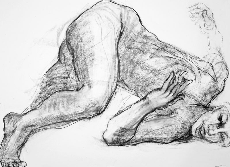 Charcoal Drawing for Sale by Noella Roos